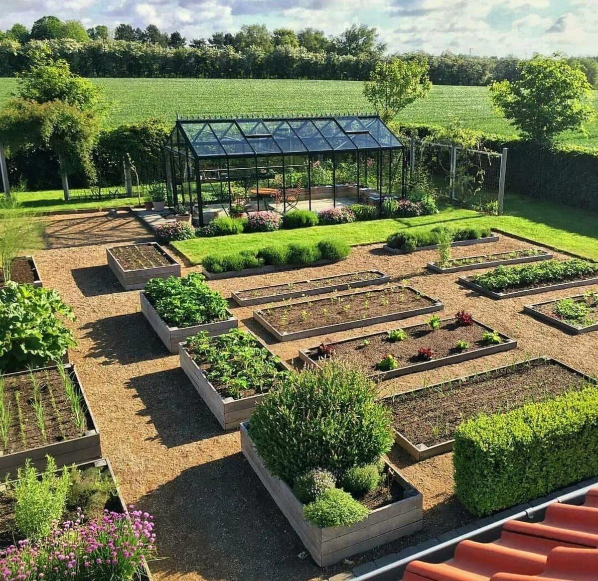картинки оформить огород сад того, кипрей имеет